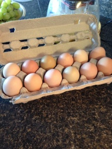 Farm freshs eggs